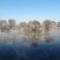 Зима,туман :: Ирина