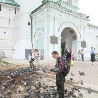 Покормите голубей. :: Михаил Попов