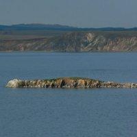 остров Крокодильчик на Байкале :: СВЕТЛАНА БЕКЛЕМИШЕВА