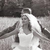 Свадьба Катеньки и Дениса :: Ольга Журавлева