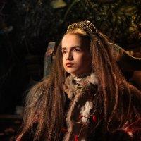 Средневековая принцесса :: Юлия Акимушкина