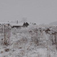 Пасмурно,  снежок :: Валера39 Василевский.