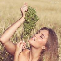 Гроздь винограда :: Татьяна Ермакова