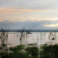 На озере. :: Сергей Щелкунов