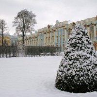 В Екатерининском парке. :: ТАТЬЯНА (tatik)