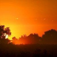 Солнце встало.. :: Сергей Сёмин