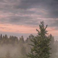 ...стелется вечер туманом... :: Галина Юняева