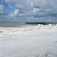 Кто видел море, тот к нему вернётся... :: nika555nika Ирина