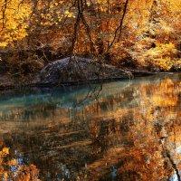 Осень :: Виктор Фин