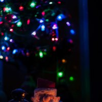 Новогодний натюрморт :: Павел Шалаев