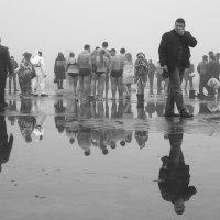 Крещенские купания :: Анатолий Горобец (Nazar)