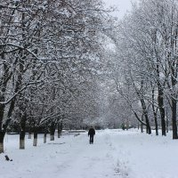 Разошлась вот  зима, заметая снегами дороги. :: Валентина ツ ღ✿ღ