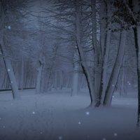 Волшебная зима... :: Natalisa Sokolets