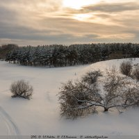 Февральские закаты 3 :: Сергей Никитин