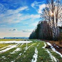 Снег  ушел. :: Валера39 Василевский.