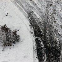 Зимний минимализм :: Юрий Васильев