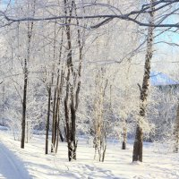 Мороз и солнце... :: Сергей Голубцов