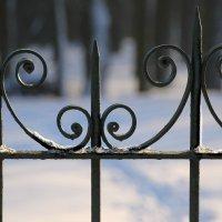 Сквозь призму зимы.... :: Tatiana Markova