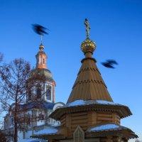 Дивеевские Святки - 2015: Часовня и птицы :: Андрей Мердишев