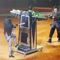 В Цирке :: LitFox .......