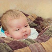 малыш :: Tatyana Belova
