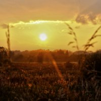 закат :: Краснов  Ю Ф