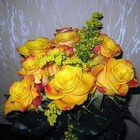 Жёлтые розы :: laana laadas