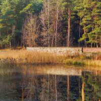 Природа осени :: Tatsiana Latushko