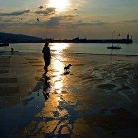 Собачка с дамой... :: Александр Бойко