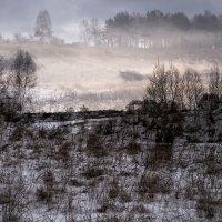 Зимние фантазии 1 :: Тамара Цилиакус
