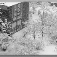 Заметает зима, заметает... :: Валентина Данилова