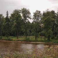 Там, на том берегу :: Svetlana27