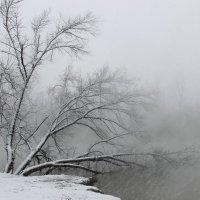 зимний пруд :: дмитрий м