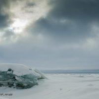 Финский залив :: Дмитрий Рожков