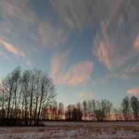Первый день зимы. :: nadyasilyuk Вознюк