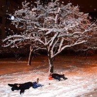 Ура! Снег! :: Валентина Данилова