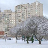зима :: navalon M