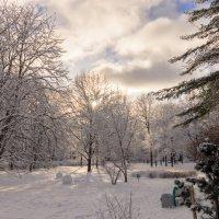 Февральское солнце :: Андрей Трегубов