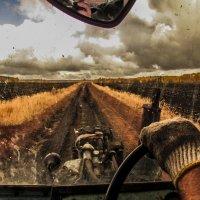 Сельские зарисовки. Из жизни трактористов :: Константин Филякин
