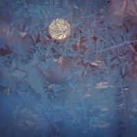 мороз и солнце :: Александра Основина