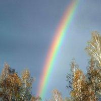Весёлые краски весны. :: nadyasilyuk Вознюк