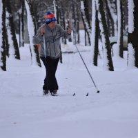 лыжник :: олеся тронько