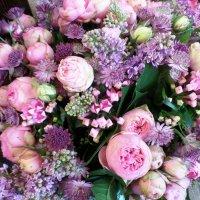 цветы для ВСЕХ!!! :: Марина Харченкова