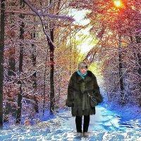 зимняя прогулка :: Александр Корчемный