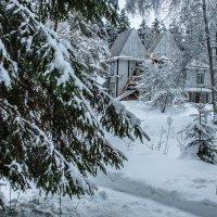 Зимой в Пенатах :: Анатолий Мигов