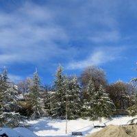 Один день зимы в Коджори :: Наталья Джикидзе (Берёзина)