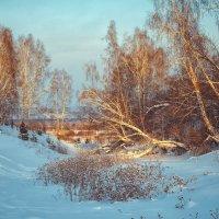 на закате... :: Юлия Makarova