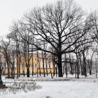 Александровский сад :: Viktor Pjankov
