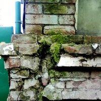 Старая стена :: Николай Филоненко