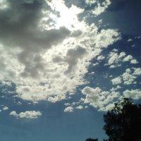 Солнечное облако! :: Герович Лилия